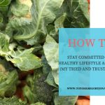 HOW TO STAY COMMITTED TO A HEALTHY LIFESTYLE AS A MUM (My Tried and Trusted Tips)