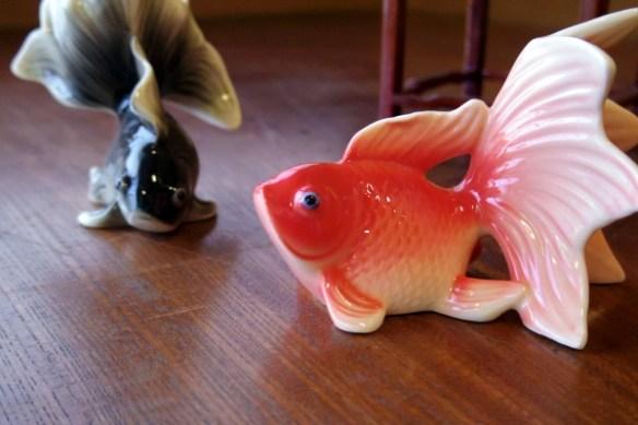 きん魚-015