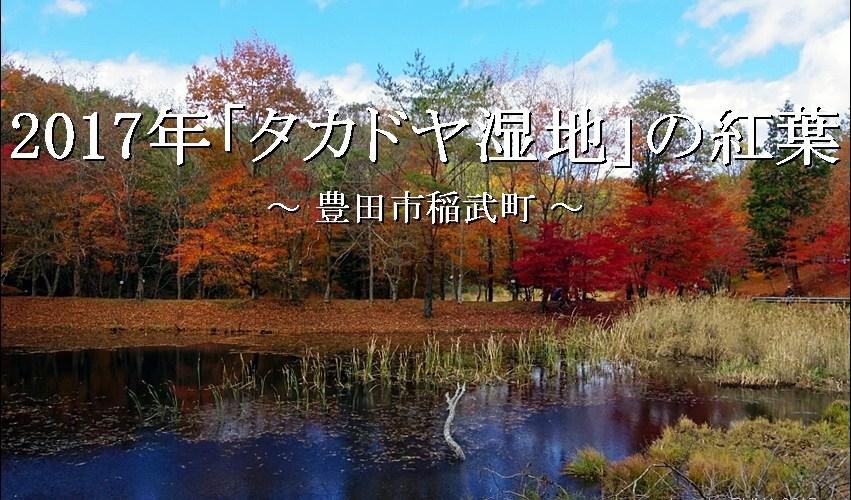 2017年の「タカドヤ湿地」の紅葉は今が最盛期【豊田市稲武】