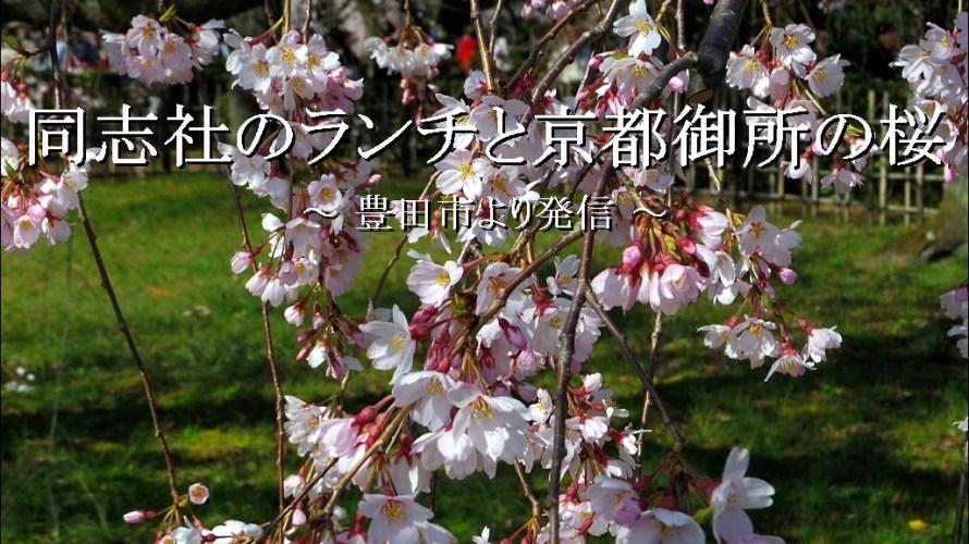 同志社の「学食ランチ」と京都御所の「しだれ桜」【京都市】