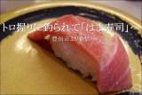トロの握りに釣られて「はま寿司」に初入店したが【豊田市】
