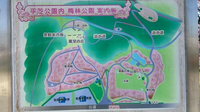平芝公園地図