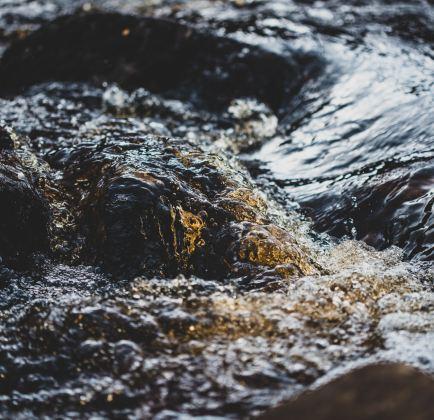 water agua acqua