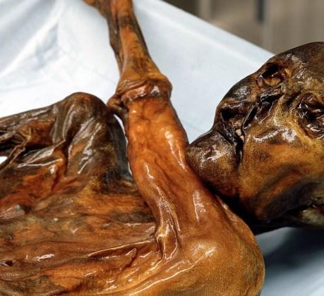 otzi mummy momia mummia