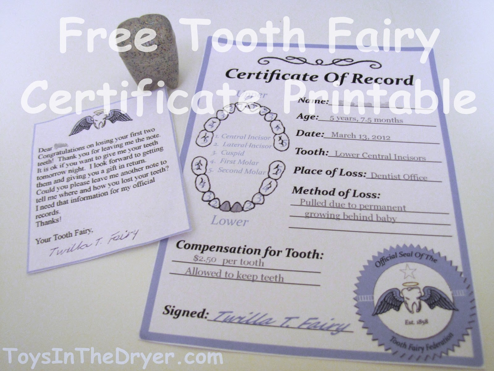 Free Tooth Fairy Certificate Pertaining To Free Tooth Fairy Certificate Template