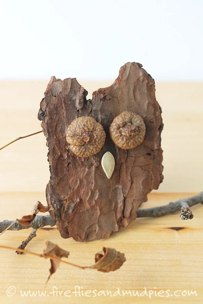 acorn crafts, bark owl
