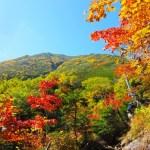 軽登山,トレッキング,登山シーズン