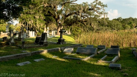 Old Southern Cemetery, A Morning Walk - Click To Enlarge