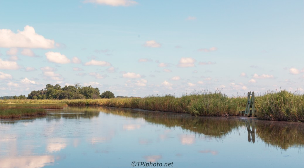 Marsh Reflections - Click To Enlarge