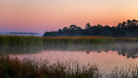 Morning Fog - click to enlarge