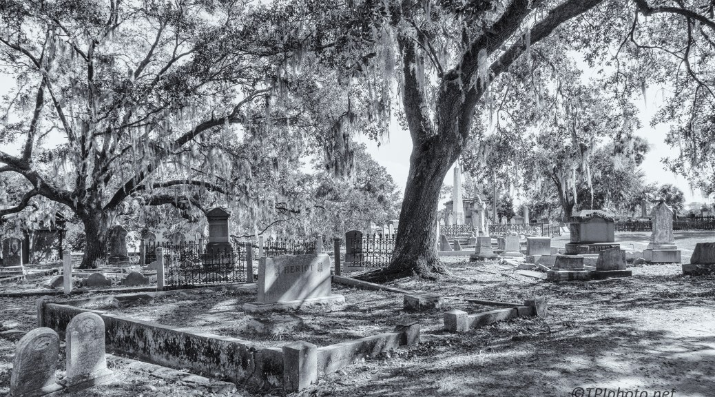 Cemetery In Black And White - click to enlarge