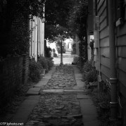 Walk Down Charleston Alley's - click to enlarge