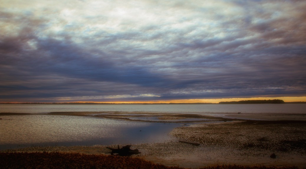 Shore Sunset, Image Diffusion - click to enlarge