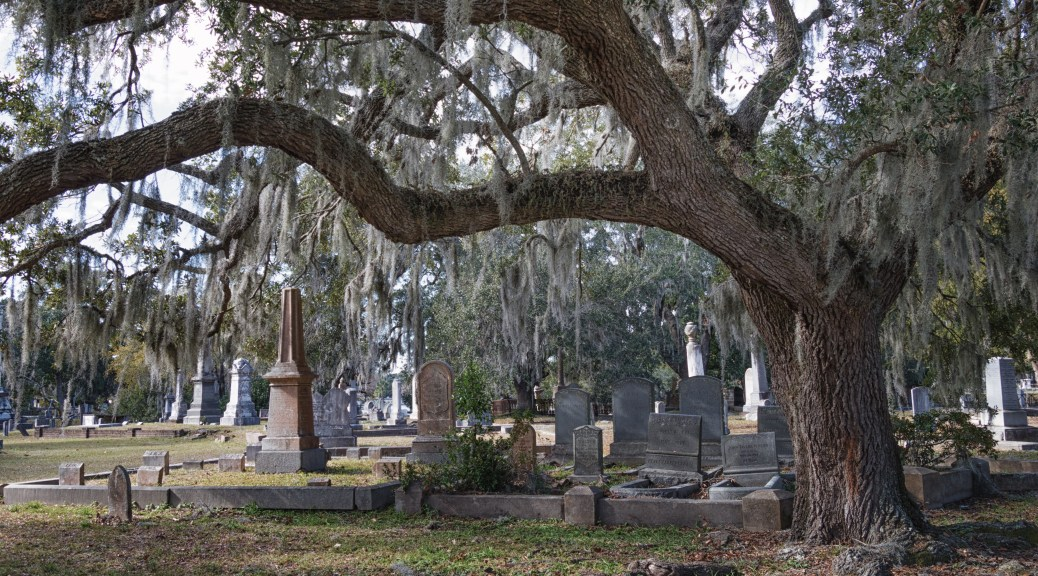 Cemetery With An Old Live Oak - click to enlarge
