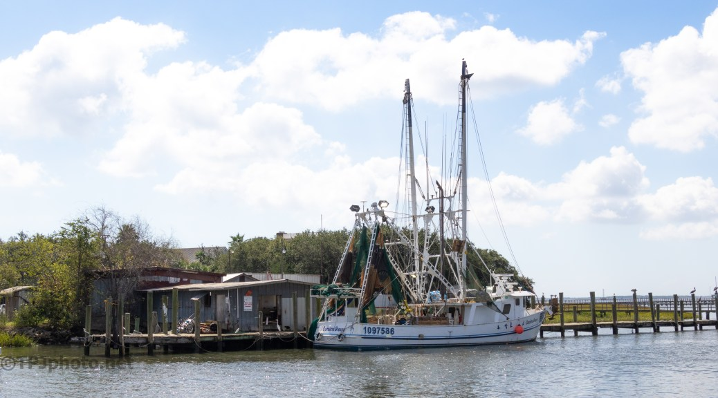 Miss Paula Seafood - click to enlarge