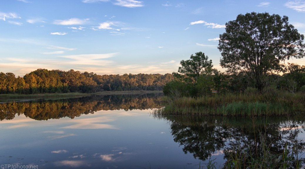 Clear Morning Pond