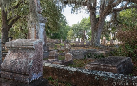 Old Southern Cemetery Scene - click to enlarge