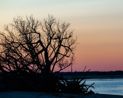 Inlet Sunset, Charleston
