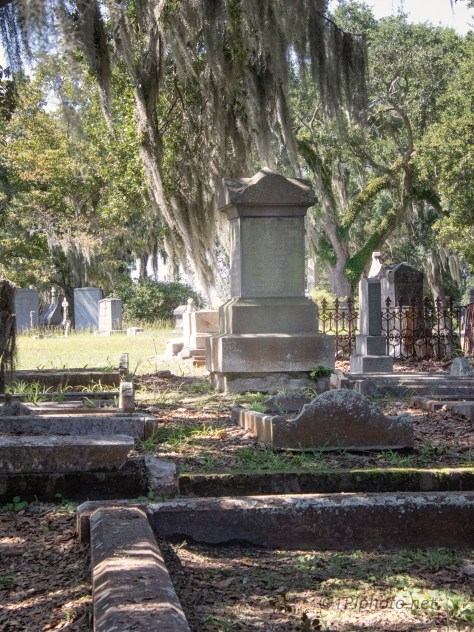 Under A Shade Tree, Cemetery
