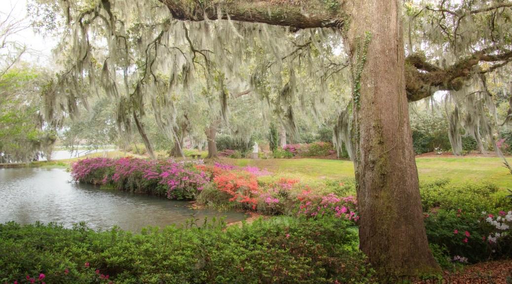Garden By The Ashley, South Carolina