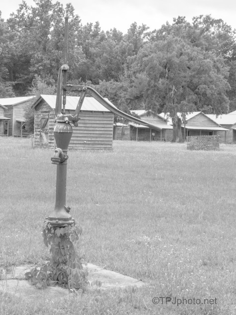 Cabins In Black And White