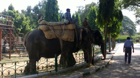 Udayagiri and Mysore 064