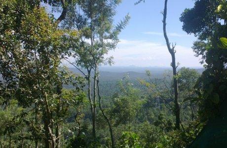Udayagiri and Mysore 10