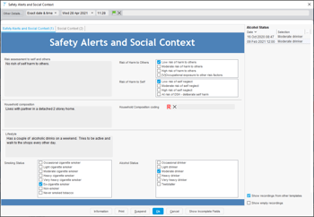 Screenshot of a Data Entry Template within SystmOne related to safeguarding.