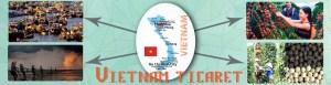 vt travel plus vietnam ticaret