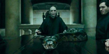 J.K. Rowling assure avoir donné un gros indice sur Nagini dans les ...