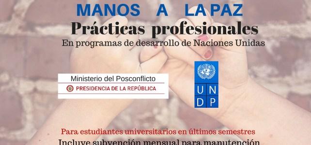 Prácticas  profesionales en programas de desarrollo de Naciones Unidas – Iniciativa MANOS A LA PAZ