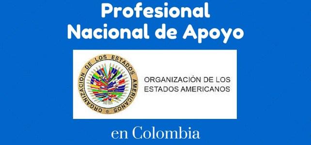 Vacante laboral en Colombia con la Organización de Estados Americanos
