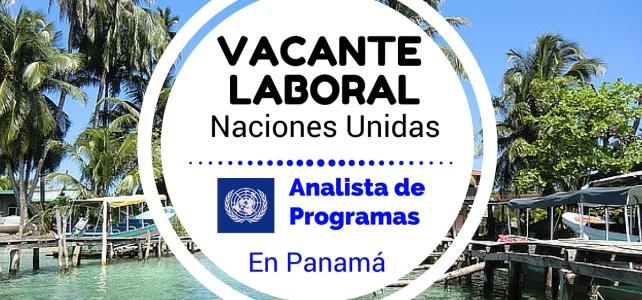 Oportunidad laboral con el PNUD – ONU en Panamá