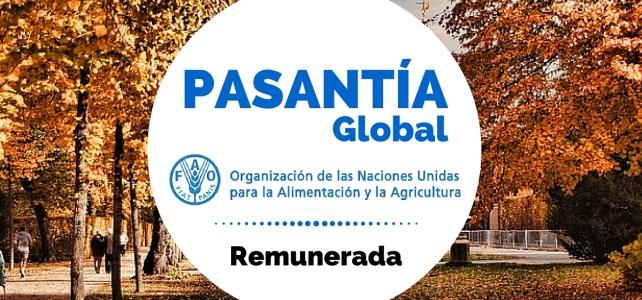 Pasantías remuneradas con la FAO (Organización de la ONU para la Alimentación y la Agricultura)