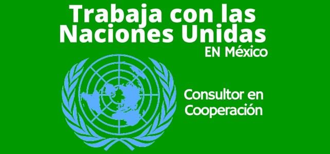 Naciones Unidas – PNUD en México busca Consultor en Cooperación