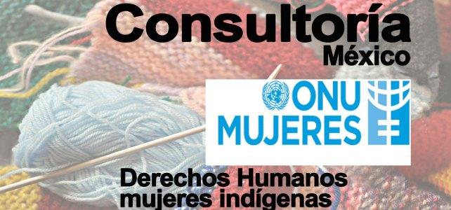 Consultoría en Derechos Humanos de mujeres indígenas en México con ONU Mujeres