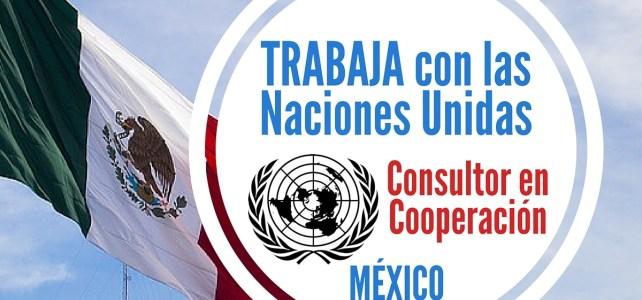 El PNUD en México abre vacante laboral