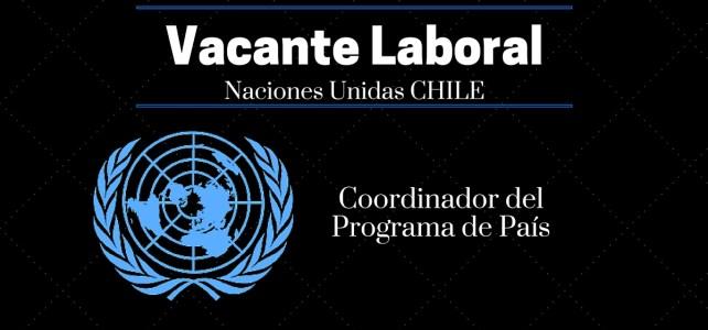 Naciones Unidas – PNUD en Chile abre convocatoria laboral