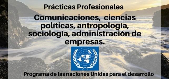 Convocatoria Prácticas profesionales con Naciones Unidas para ciencias sociales y administración de empresas