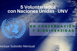 Conservacion Biodiversidad