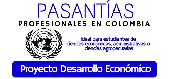 El PNUD abre convocatoria para realizar pasantía en Colombia