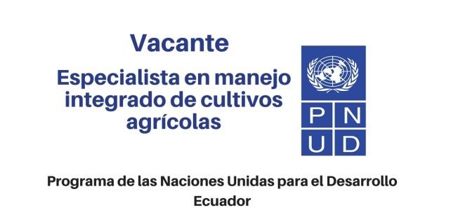 Voluntario de naciones Unidas en PERU –  Especialista en manejo integrado de cultivos agrícolas