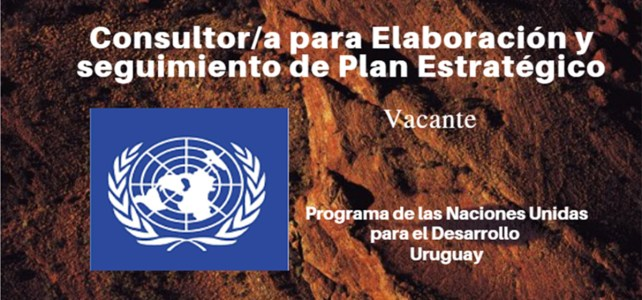 Vacante Consultor/a para Elaboración y seguimiento de Plan Estratégico con la ONU