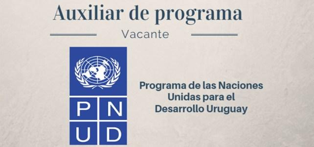Vacante Auxiliar de programa con Naciones Unidas
