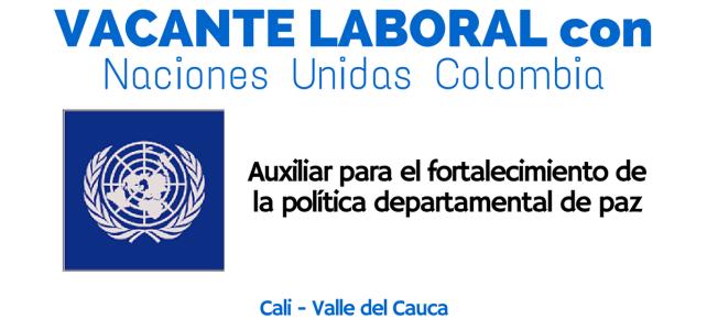 El PNUD abre vacante laboral en Colombia