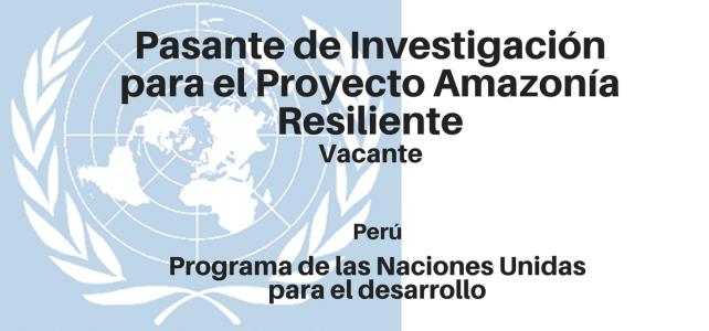 Pasante de Investigación para el Proyecto Amazonía Resiliente