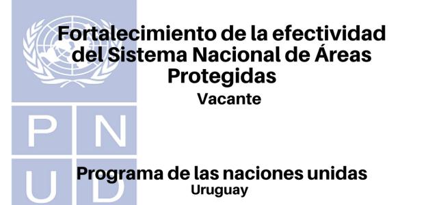 Vacante fortalecimiento Sistema Nacional de Áreas Protegidas