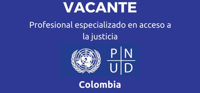 Vacante profesional especializado en acceso a la justicia.