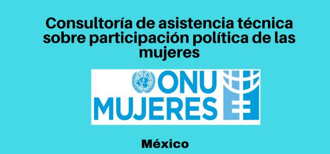 Consultoría sobre participación política de las mujeres con ONU MUJERES