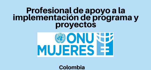 Vacante Profesional de apoyo a la implementación de programa y proyectos ONU Mujeres